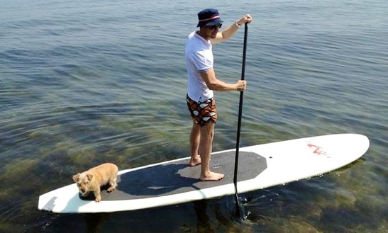 Paddleboard Rental In Orange Beach, Al