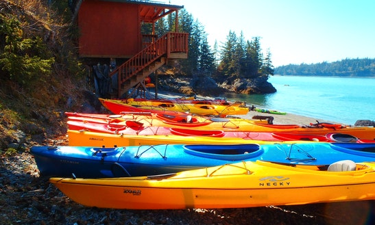 Kayak Rental In Homer