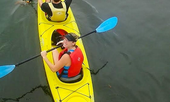 Kayak Rentals In Tarpon Springs