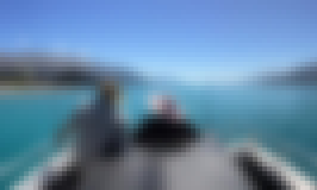 "Guided Fishing Charter  on 26' ""Nikita"" Boat with Simon"