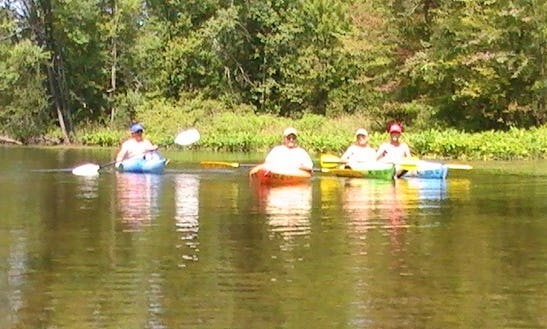 Kayak Rental In Three Rivers, Mi