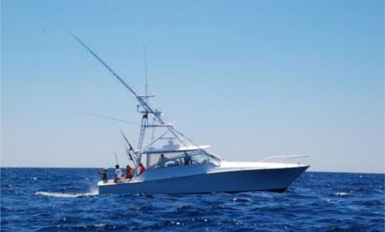 Deep Sea Fishing Charter In Isle Of Palms, Sc