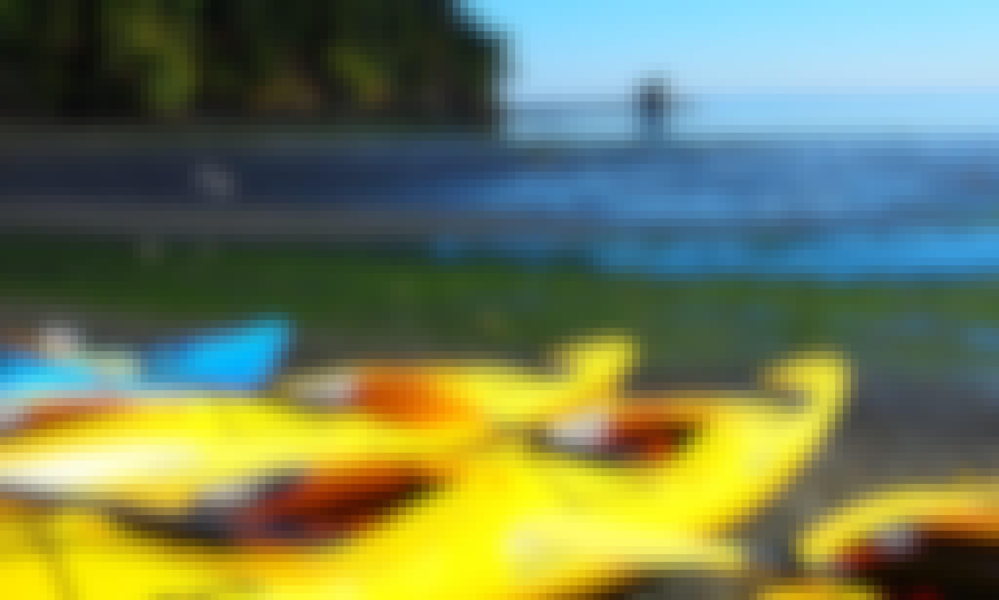 Explore Port Angeles, Washington on a Guided Kayak Tour