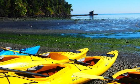 Kayak Rental In Port Angeles