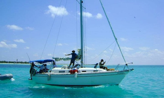 Scuba And Fishing Charters In San Miguel