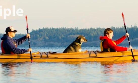 Triple Kayak Rental In Waldport, Or
