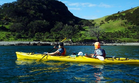 Kayaks For Hire In Onerahi