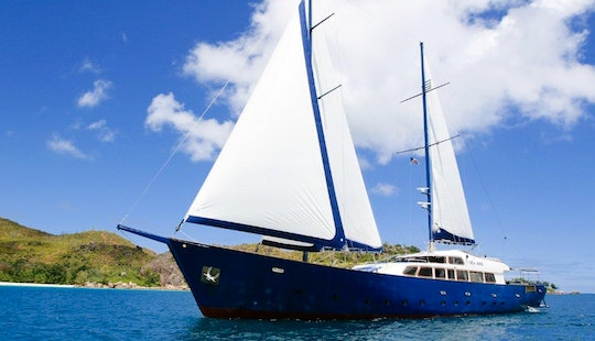 Sea Bird Custom-built Schooner For Charter