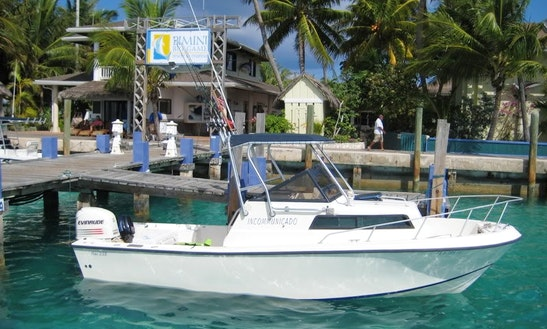 Tampa Fishing Charter On 22' Nautic Star Boat With Captain Tim