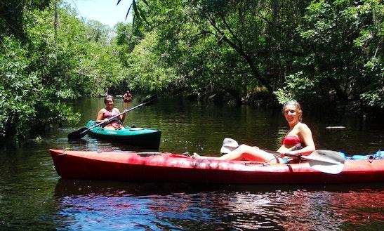 Go Canoeing In Wimauma, Florida