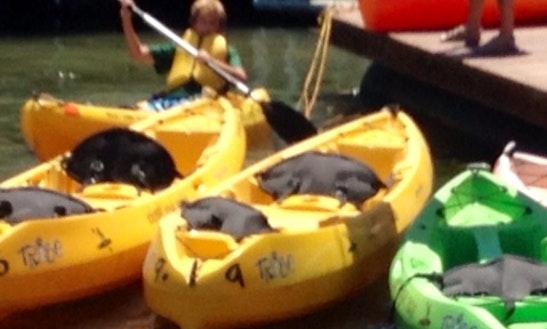 Kayak For Rent In Isleton