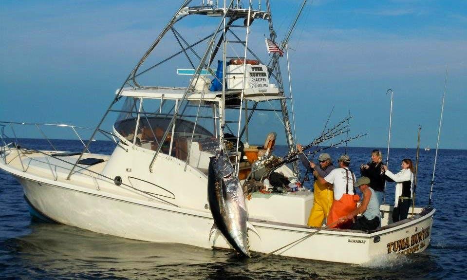 Book a 36' Sport Fisherman Charter in Gloucester, Massachusetts