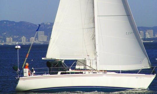 """Wild Streak"" 36' Catalina Sloop Charter in Sausalito, California"
