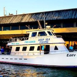 Deep sea fishing charters on 53 39 eddy lee west bradenton for Cortez motors bradenton fl
