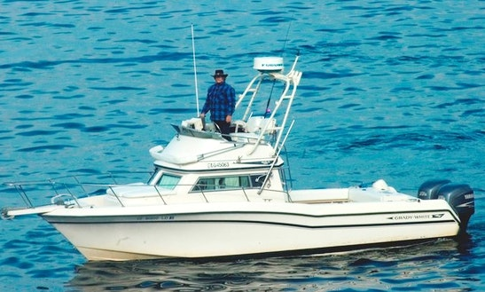 Fishing & Whale Watching Charters In Santa Barbara