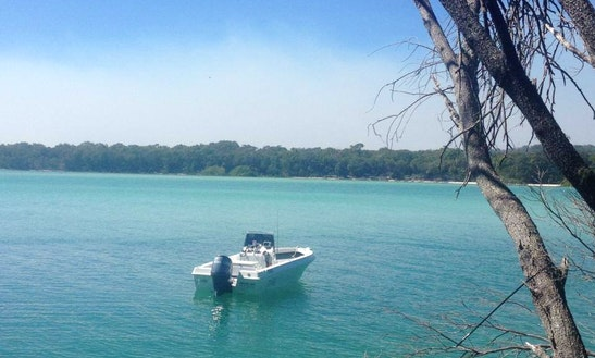 Fishing Charter In Hervey Bay
