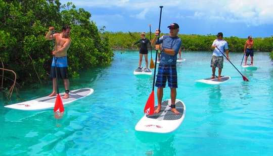 Paddleboard Rental In Caicos Islands