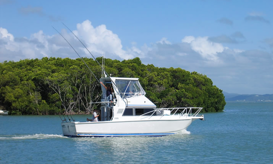 Fishing Charters In North Queensland