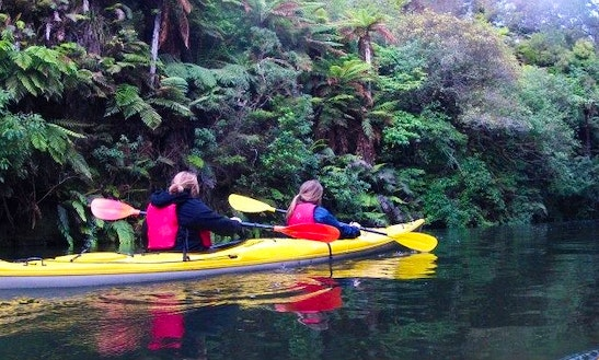 Kayak Rentals And Tours On Lake Karapiro