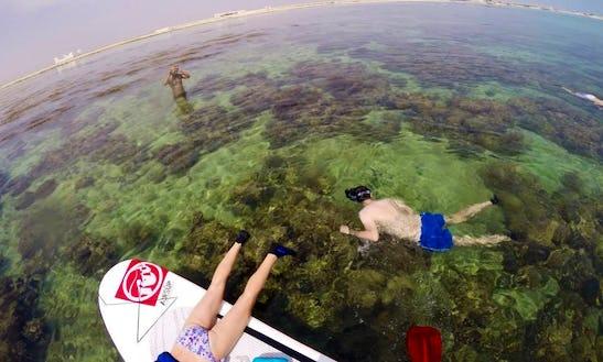 Reef Snorkeling In Doha