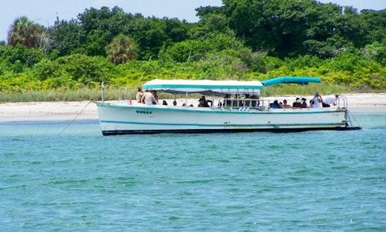 Dolphin & Snorkel Cruise To Egmont Key Island