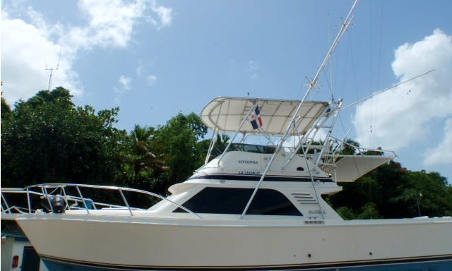 "33ft ""Revoltosa"" Blackfin Fishing Charter for up to 7 from La Romana, Dominican Republic"