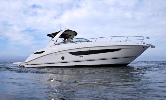 35' Sea Ray Yacht Rental In Jolly Harbour, Antigua & Barbuda