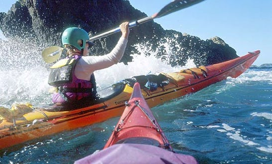 Kayaking Trips In New Zealand