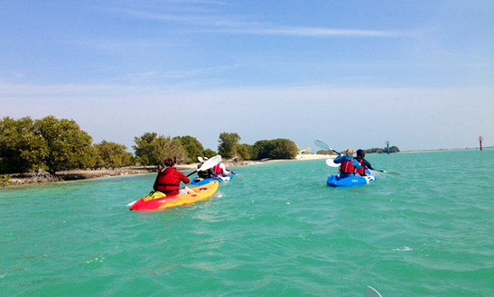 Kayak Tour In Doha Qatar