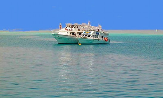 Diving Charters From Hurghada Egypt