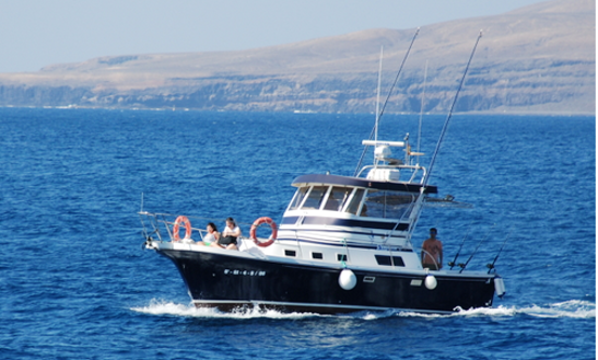 Fishing Charter In Puerto Calero