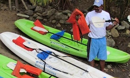 Mangrove / Damas Island Kayaking Passenger Boat Taxi In Jaco