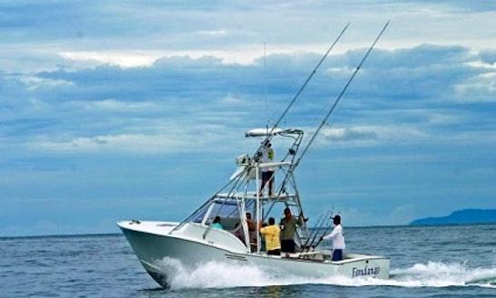 32' Cuddy Cabin Fishing Charter