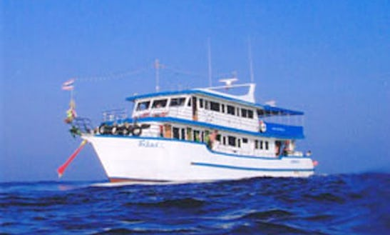 Charter Sea Horse Dive Boat Fleet In Muang