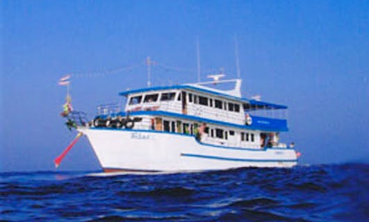 Charter Sea Horse Dive Boat Fleet in Muang