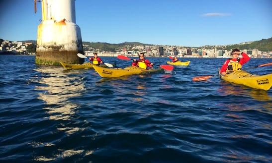 Kayak Rental In Wellington