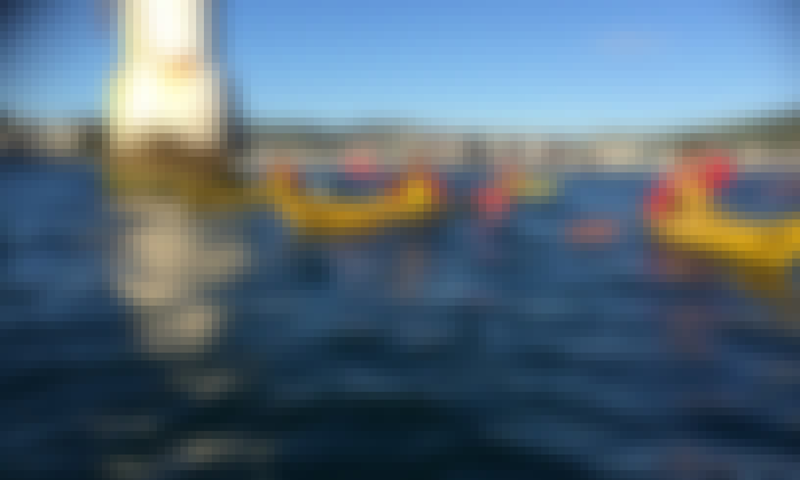 Kayak Rental in Wellington, New Zealand