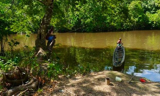 Moengo & Cottica River Trip In Suriname, Paramaribo