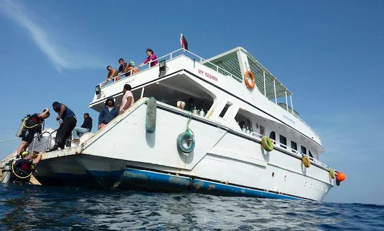 Diving Charter In Egypt, Qesm Hurghada