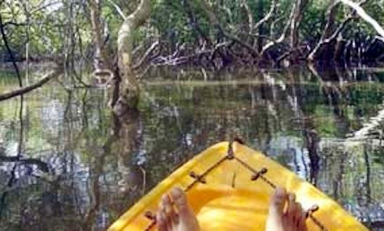 Kayak Rental In Penha De França
