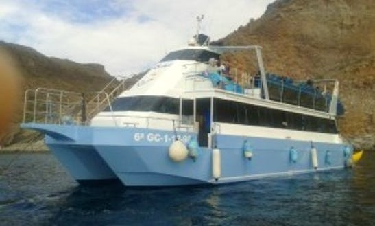 Diving Tours On 110 Person Sailing Catamarán In Tarajalillo, Canary Islands