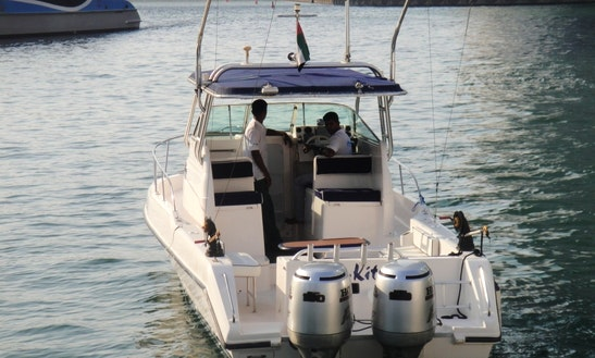 31' Walkaround Sport Fisherman In Dubai, Uae