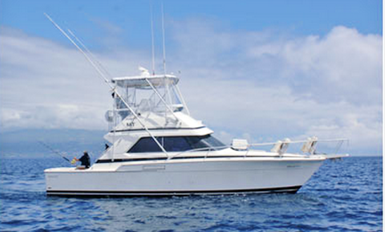 37' Fishing Charter In Horta Portugal