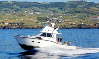 Fishing Charter 31' Paty in Horta Portugal