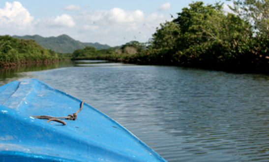 Negril River Ride In Jamaica