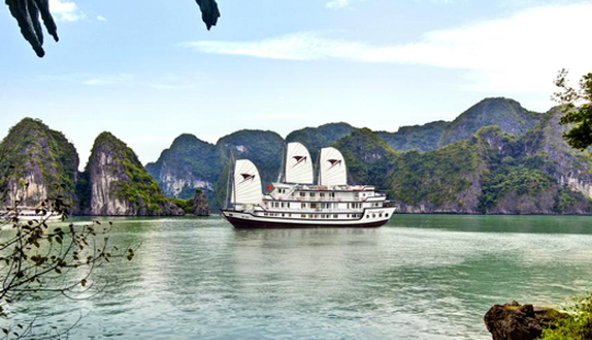 Signature Cruise In Hạ Long Bay