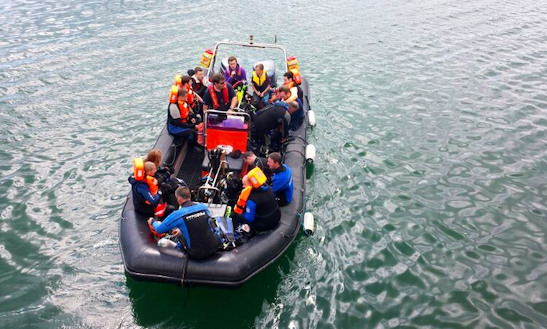 Rib Tours, Kayaks And Stand Up Paddleboards Available In Howth