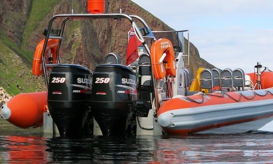 Twin Suzuki 250 Hp Powered Rigid Inflatable Boat In John O'groats