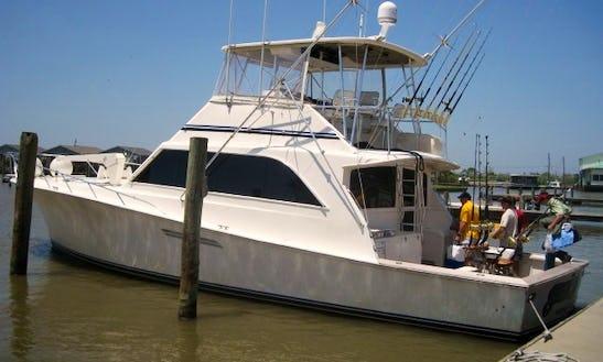34' Sport Fisherman In Venice, Louisiana United States