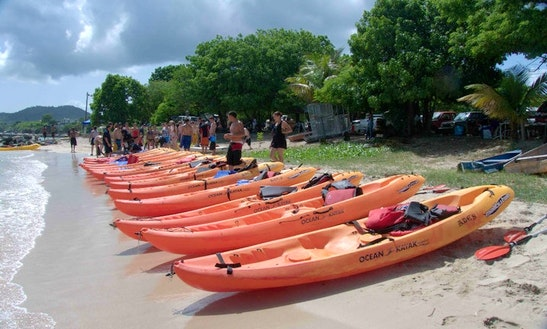 Kayak Tour On The Magical Bioluminescent Bay In Vieques